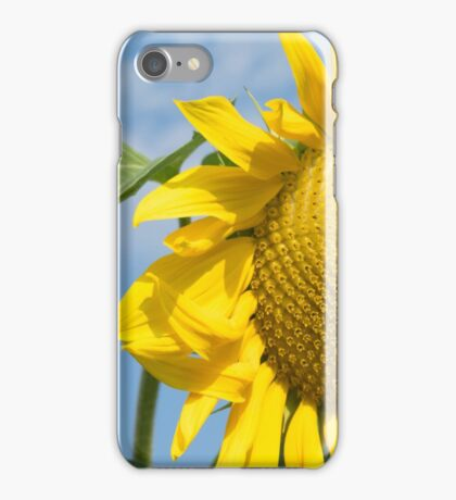 Late Summer iPhone Case/Skin