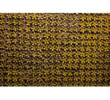 Floral metallic pattern design. Elegant decorative background. Photographic Print