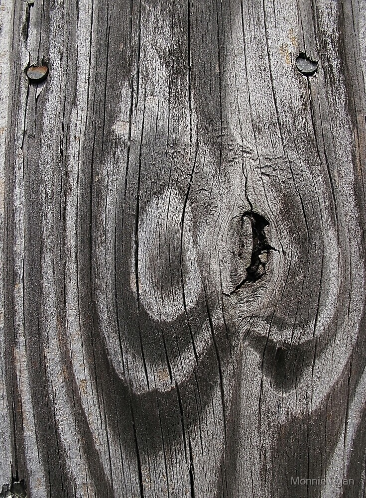 Fence Face by Monnie Ryan