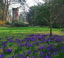 Water Tower, Bournemouth by RedHillDigital