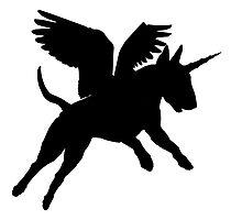 Magic Bull Terripegacorn! Photographic Print