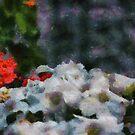 in the garden by marcwellman2000