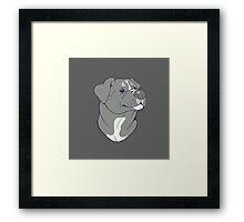 Pit bull Pride-Blue Framed Print
