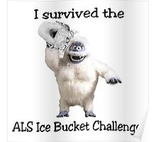 I survived ALS Ice Bucket Challenge Bumble Poster
