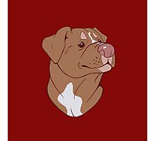 Pit Bull Pride- Red Photographic Print
