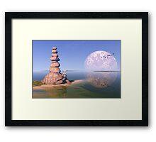 Zen Tortoise Framed Print
