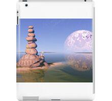 Zen Tortoise iPad Case/Skin