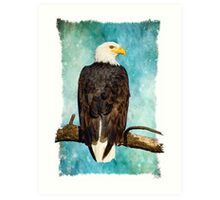 Old Mill Eagle Art Print