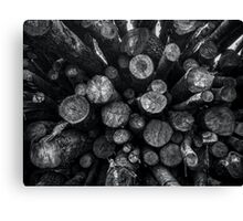 A Pile of Logs Canvas Print