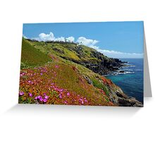 Wildflowers at the Lizard, Cornwall Greeting Card