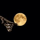 Vulcan Moon by Nigel Bangert