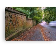 Village road Canvas Print