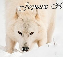Arctic Wolf Christmas Card - French - 10 by WolvesOnly