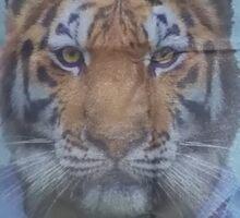 Tiger Sensei Sticker