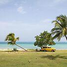 Paradise by smilyjay