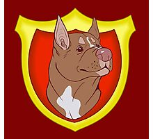 Pit Bull Pride- Red Point with Crest Photographic Print