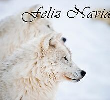 Arctic Wolf Christmas Card - Spanish - 11 by WolvesOnly