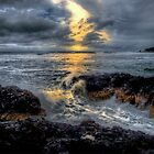 It's All In A Days Work ~ Oregon Coast ~ by Charles & Patricia   Harkins ~ Picture Oregon