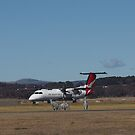 Canberra Airport, Flying Kangaroo. by Tom McDonnell