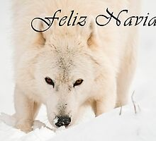 Arctic Wolf Christmas Card - Spanish - 10 by WolvesOnly