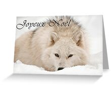 Arctic Wolf Christmas Card - French - 12 Greeting Card