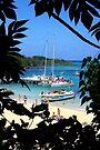 Jamaican Paradise by John Carpenter