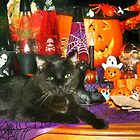 ~ Is It Halloween Yet? ~ by Nadya Johnson