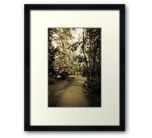 Entering to Wonderland Framed Print