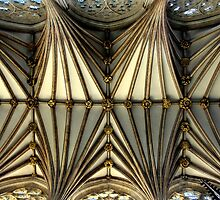 Cathedral Ceiling by rodsfotos