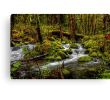 About The Green Stuff ~ Oregon Scenic Rivers ~ Canvas Print