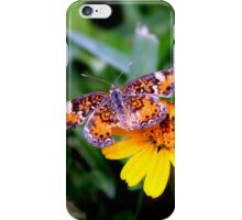 Butterfly Resting on Flower iPhone Case/Skin