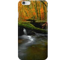 The Big Glow  ~ Whittaker Creek ~ iPhone Case/Skin