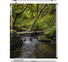 A Good Place To Stop  ~ Upper Whittaker Creek ~ iPad Case/Skin