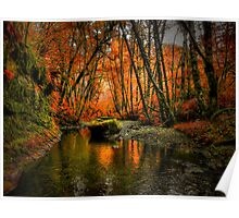 I'll Take It ~ Fall Colors On Whittaker Creek ~ Poster