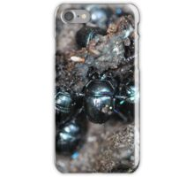 The dung beetles Anoplotrupes stercorosus iPhone Case/Skin