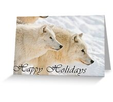Arctic Wolf Holiday Card - 13 Greeting Card