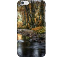 Just Enough Light ~ Whittaker Creek ~ iPhone Case/Skin