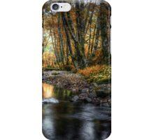 Just Enough Light ~ Whittaker Creek ~ iPhone Case/Skin