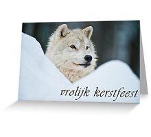 Arctic Wolf Christmas Card - Dutch - 14 Greeting Card