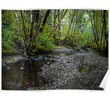 Low Water ~ Whittaker Creek ~ Poster
