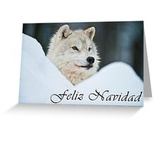 Arctic Wolf Christmas Card - Spanish - 14 Greeting Card