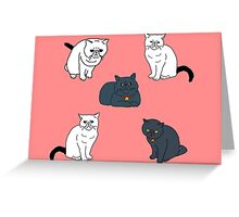 Black & White Cats Pattern Greeting Card