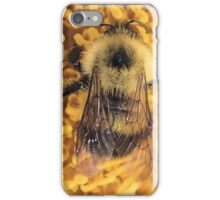 Bumble Bee '14 iPhone Case/Skin