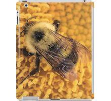 Bumble Bee '14 iPad Case/Skin