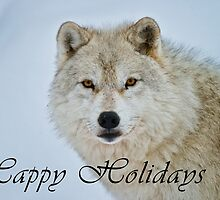 Arctic Wolf Holiday Card - 15 by WolvesOnly