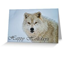 Arctic Wolf Holiday Card - 15 Greeting Card