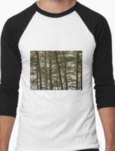 Through the Beech Trees  Men's Baseball ¾ T-Shirt