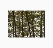Through the Beech Trees  Unisex T-Shirt
