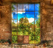 Looking out of the Abandoned Building by Anthony M. Davis