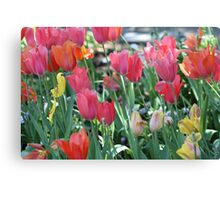 A Patch of Spring Canvas Print